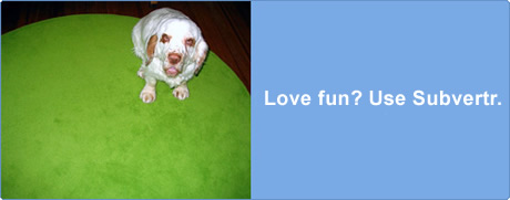 Love fun? User Flickr.